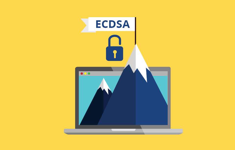 Certificates with ECDSA: quick verification and a high level