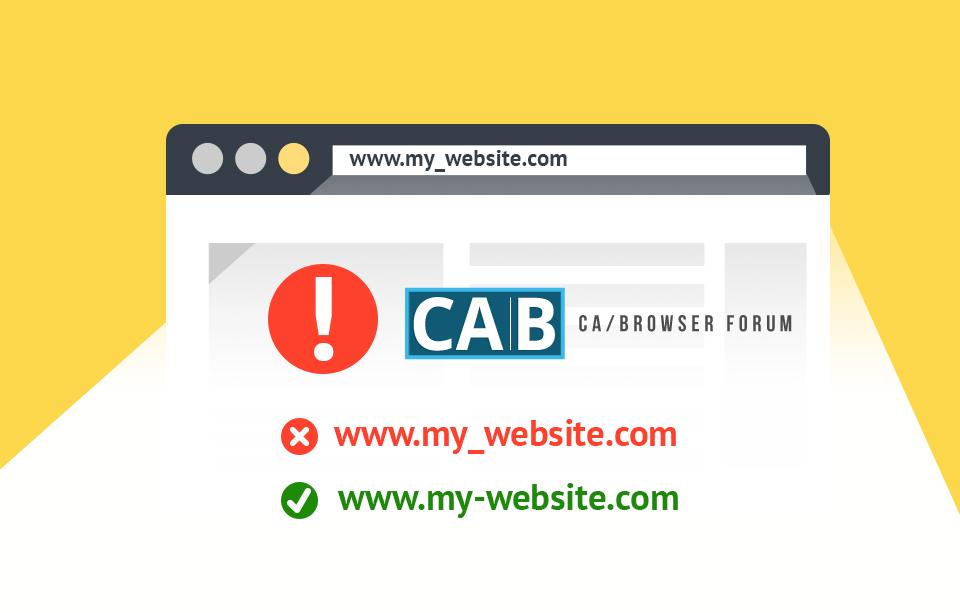Cab forum dns